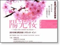 映画『陽光桜-YOKO THE CHERRY BLOSSOM-』