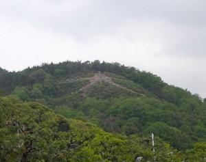 左大文字山